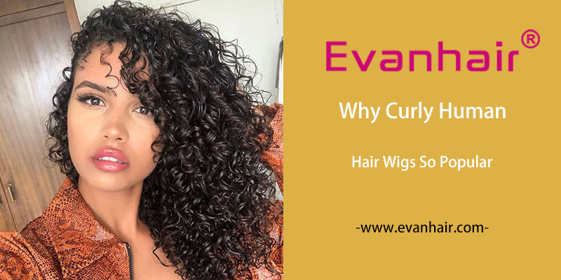 curly hair wigs, short curly bob wigs, human hair afro wigs, short curly wigs, long curly wigs, Brazilian curly lace front wig, curly lace front lace closure wig